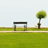 Tree and a vacant bench Stock Photo