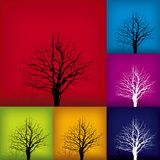 Tree variations (vector). Color variations of tree background illustration (vector Stock Image