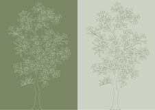 Tree. Vector. Royalty Free Stock Images