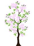 Tree. Vector. Stock Image