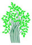 Tree. vector Stock Photo