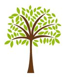 Tree vector Stock Photos