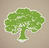 Tree. Vector Stock Photos