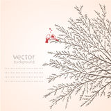Tree vector Stock Images