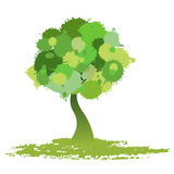 Tree vector Stock Image
