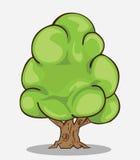 Tree Vector Royalty Free Stock Photos