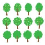 Tree vector cartoon illustration abstract design vector silhouette Royalty Free Stock Photos