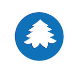 Tree vector icon. Isolated on a white background Stock Image