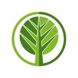 Tree vector icon. Royalty Free Stock Photo