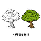 Tree Vector illustration. Cartoon trees isolated on white background. Line art and colorful Stock Photos