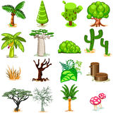Tree Vector illustration Collection Pack Stock Photos
