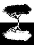 Tree vector silhouette Royalty Free Stock Photos