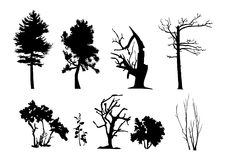 Tree vector silhouettes Royalty Free Stock Photos