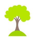 Tree vector Royalty Free Stock Photography