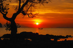 Tree view boat. On the beach at sunset Royalty Free Stock Photos