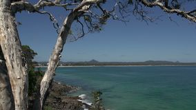Tree view from the coastal walk noosa National Park, Queensland, Australia stock video footage