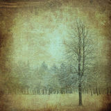 Tree on a vintage paper Stock Photography