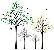 Tree Wall Decal Royalty Free Stock Photos