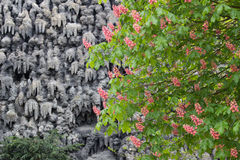 Tree and wall in Wallenstein Garden in Prague. Flowering trees and a wall of artificial stalactites in the Wallenstein Garden in Prague Royalty Free Stock Image