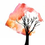 Tree with watercolor crown. Tree with bright watercolor crown Royalty Free Stock Photo