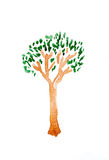Tree of watercolor on white paper isolated Stock Photos