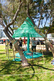 Tree Weaving Stock Photos