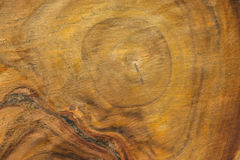 The tree which cut ,to the furniture Royalty Free Stock Images