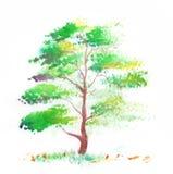 Tree on a white background stock illustration