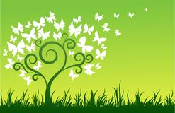 Tree with white butterflies Stock Photo