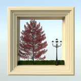 Tree. In white frame - 3D Stock Images