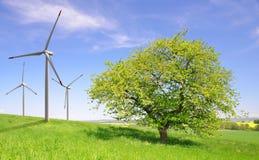 Tree with wind turbines Stock Photo