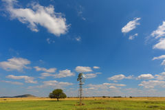 Tree and a windmill Royalty Free Stock Photo