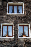 Tree windows in Le Hourdel Stock Photos