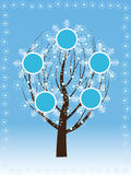 Tree at winter Stock Photos