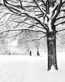 Tree in winter with children and snow. The bare branches of Winter trees are caked in heavy snow. In the distance two small figures can be seen pulling sledges Royalty Free Stock Image