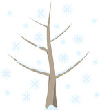 Tree in winter with snow. Tree with snow in winter, snowflakes in cold blue, on white background Stock Image