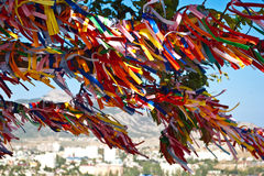 Free Tree With Colored Ribbons Stock Photos - 13210923