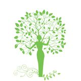 Tree woman. Tree with woman for trunk - green mother earth mother nature concept (leaves and roots are separate pieces in vector Stock Photo