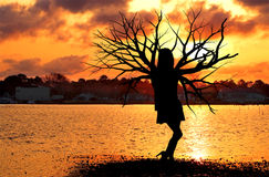 Tree Woman at the Ocean Stock Images