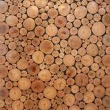 Tree wood brown circle stumps Royalty Free Stock Photography