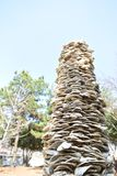 Tree, Wood, Rock Stock Photo