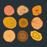 Tree wood slices vector set Royalty Free Stock Image