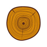 Tree wood slices vector. Stock Images