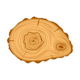 Tree wood slices vector. Stock Photography