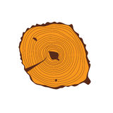 Tree wood slices vector. Stock Image
