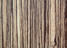 Tree wood textured background Stock Image