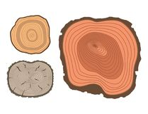 Tree wood trunk slice texture circle cut wooden raw material vector detail plant years history textured rough forest. Circular tree trunk growth industry vector illustration