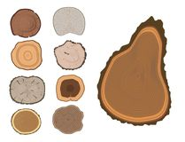 Tree wood trunk slice texture circle cut wooden raw material vector detail plant years history textured rough forest. Circular tree trunk growth industry stock illustration
