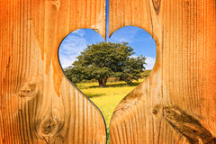 Tree in a wooden heart Royalty Free Stock Photos