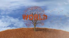 Tree with the word world, fall leaves stock video